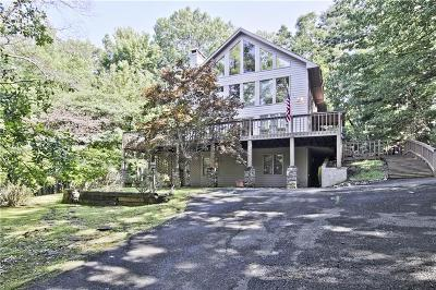 Pickens County Single Family Home For Sale: 296 Fairview Court