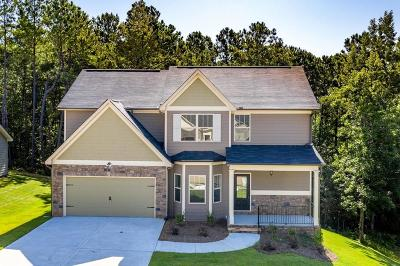 Douglasville Single Family Home For Sale: 3130 Anneewakee Falls Parkway