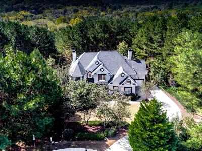 Canton Single Family Home For Sale: 621 Talmadge Lane