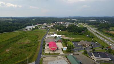 Pickens County Commercial For Sale: 3989 Camp Road