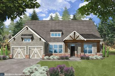 Canton Single Family Home For Sale: 423 Horizon Trail