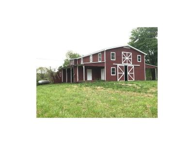 Cherokee County Single Family Home For Sale: 861 Stancil Road