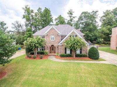 Smyrna Single Family Home For Sale: 2227 Austin Lake Drive SE