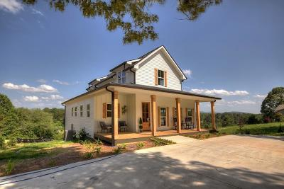 Ellijay Single Family Home For Sale: 147 Chinquapin Road Road