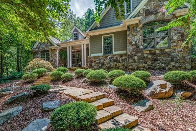 Ellijay Single Family Home For Sale: 175 N Harris Creek Drive