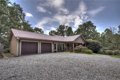 Ellijay Single Family Home For Sale: 444 Pleasant Oak Trail