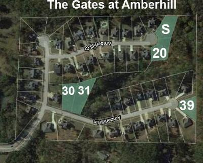 Paulding County Residential Lots & Land For Sale: Amberhill Lane