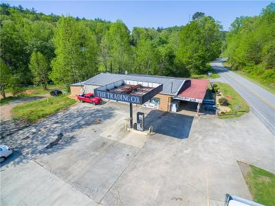 Lumpkin County Commercial For Sale: 13870 Hwy 19n