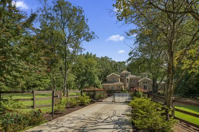 Roswell Single Family Home For Sale: 1010 Jones Road