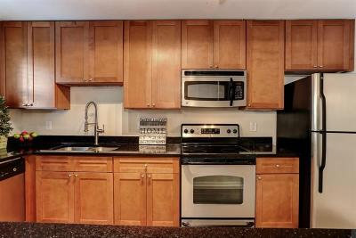 Sandy Springs Condo/Townhouse For Sale: 145 N River C Drive #C