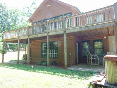 Ellijay Single Family Home For Sale: 12304 Tails Creek Road