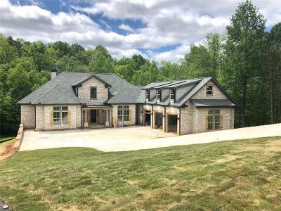 Cumming Single Family Home For Sale: 2205 Cascading Creek Court