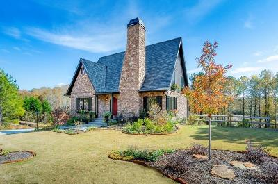 Roswell Single Family Home For Sale: New Mountain Park Road