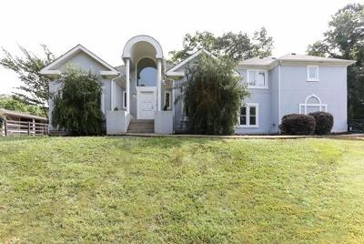 Roswell Single Family Home For Sale: 10785a Shallowford Road
