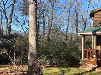 Lumpkin County Single Family Home For Sale: 645 Alonzo Cain Road