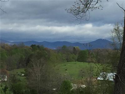 Lumpkin County Single Family Home For Sale: 39 Barrett Circle