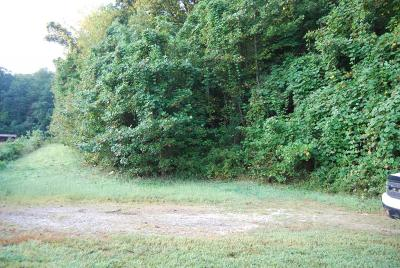 Lumpkin County Commercial For Sale: State Route 9 And 52