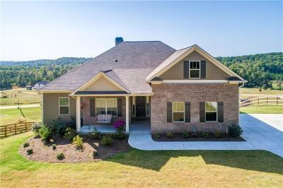 Lumpkin County Single Family Home For Sale: 253 Odgers Trail