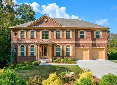Marietta Single Family Home For Sale: 1687 Ashebark Court