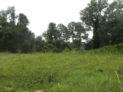 Thomson Residential Lots & Land For Sale: 000