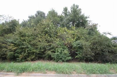 Martinez Residential Lots & Land For Sale: 259 Stonington Drive