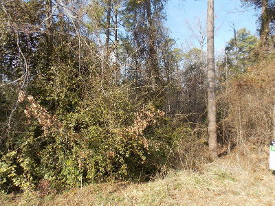 Lincolnton Residential Lots & Land For Sale: Cherokee Drive