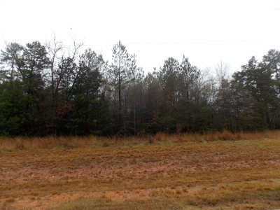 Lincoln County Residential Lots & Land For Sale: 229.58 Maxim Road