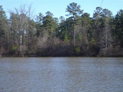 Thomson Residential Lots & Land For Sale: 1052 East Pine Valley Drive