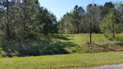 Thomson Residential Lots & Land For Sale: Lot 1