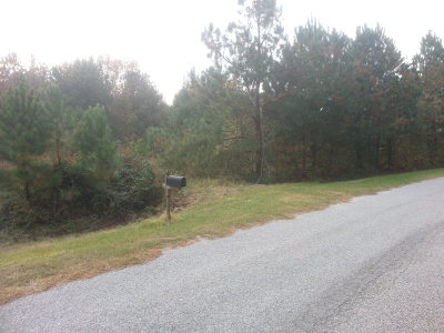 Thomson Residential Lots & Land For Sale: Lot 2 Lake Drive
