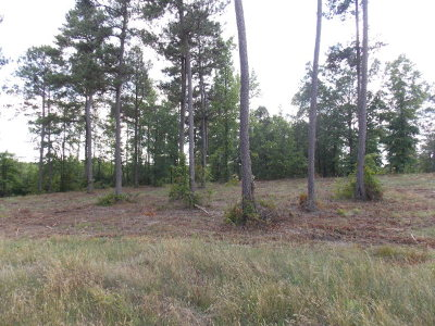 Lincolnton Residential Lots & Land For Sale: 2 Outrigger Drive