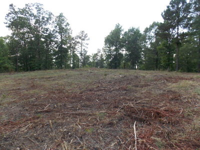 Lincolnton Residential Lots & Land For Sale: 1 Outrigger Drive