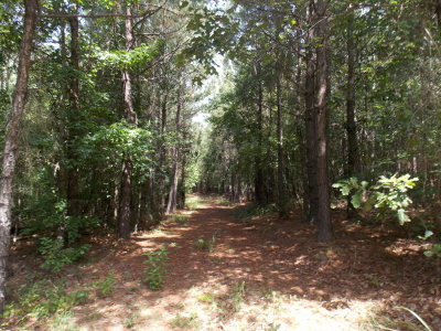 Lincolnton Residential Lots & Land For Sale: 27