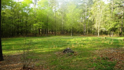 Columbia County Residential Lots & Land For Sale: Harlem Wrens Road