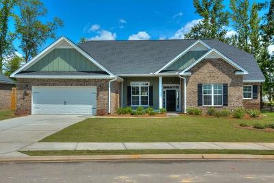 Grovetown Single Family Home For Sale: 311 Tramore Drive