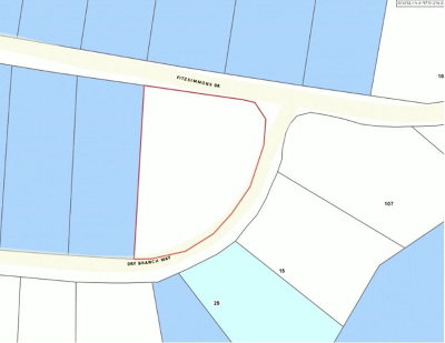 Residential Lots & Land For Sale: Lot 51 Fitzsimmons Drive