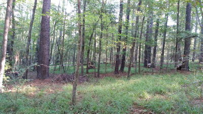 Evans Residential Lots & Land For Sale: 4360b