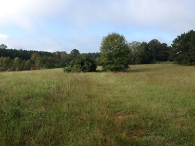 Edgefield County Residential Lots & Land For Sale: 833 Us Hwy 25n