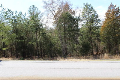 Grovetown Residential Lots & Land For Sale: 5731 Wrightsboro Road