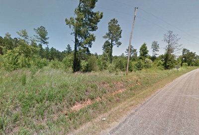 Residential Lots & Land For Sale: 407 Youngblood Road