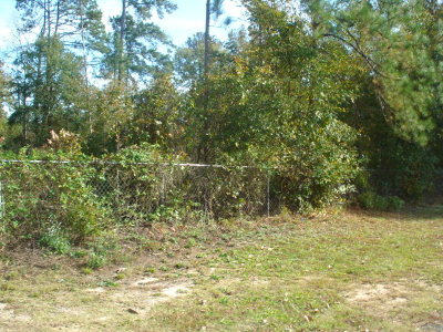 McDuffie County Residential Lots & Land For Sale: 44 Corbin Street