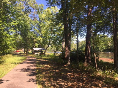 Residential Lots & Land For Sale: 800