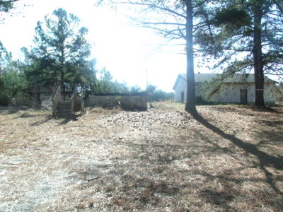 McDuffie County Residential Lots & Land For Sale: Mesena Road
