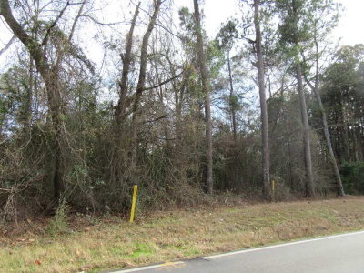Thomson Residential Lots & Land For Sale: Mesena Road