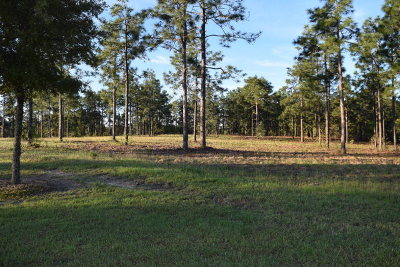 Residential Lots & Land For Sale: Lot 2 Woods End Way