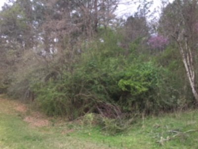 Martinez Residential Lots & Land For Sale: 901 Point Comfort Road