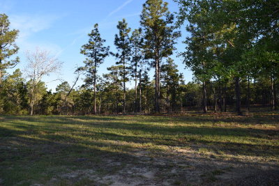 Residential Lots & Land For Sale: Lot 3 Woods End Way