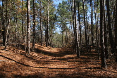 Augusta Residential Lots & Land For Sale: 1894 McDade Road