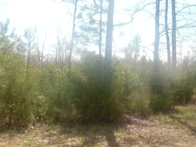 Lincolnton Residential Lots & Land For Sale: Lot 30a Lakeshore Estate Drive