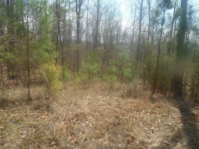 Lincolnton Residential Lots & Land For Sale: Lot 30c Lakeshore Estate Drive